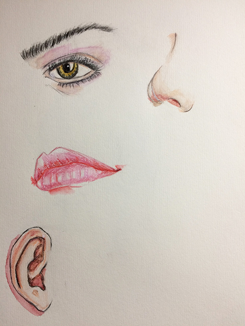 drawing nose,painting绘画